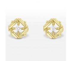 My Dior Earrings Y