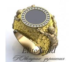 Мужское эксклюзивное кольцо art: EX015 Titans
